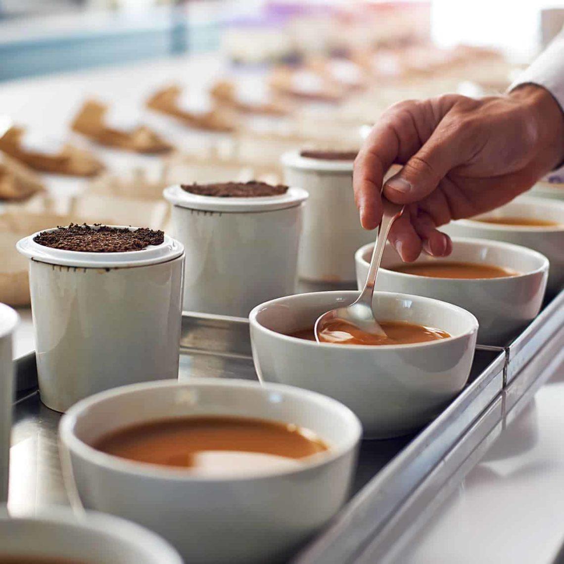 Tea-Selection