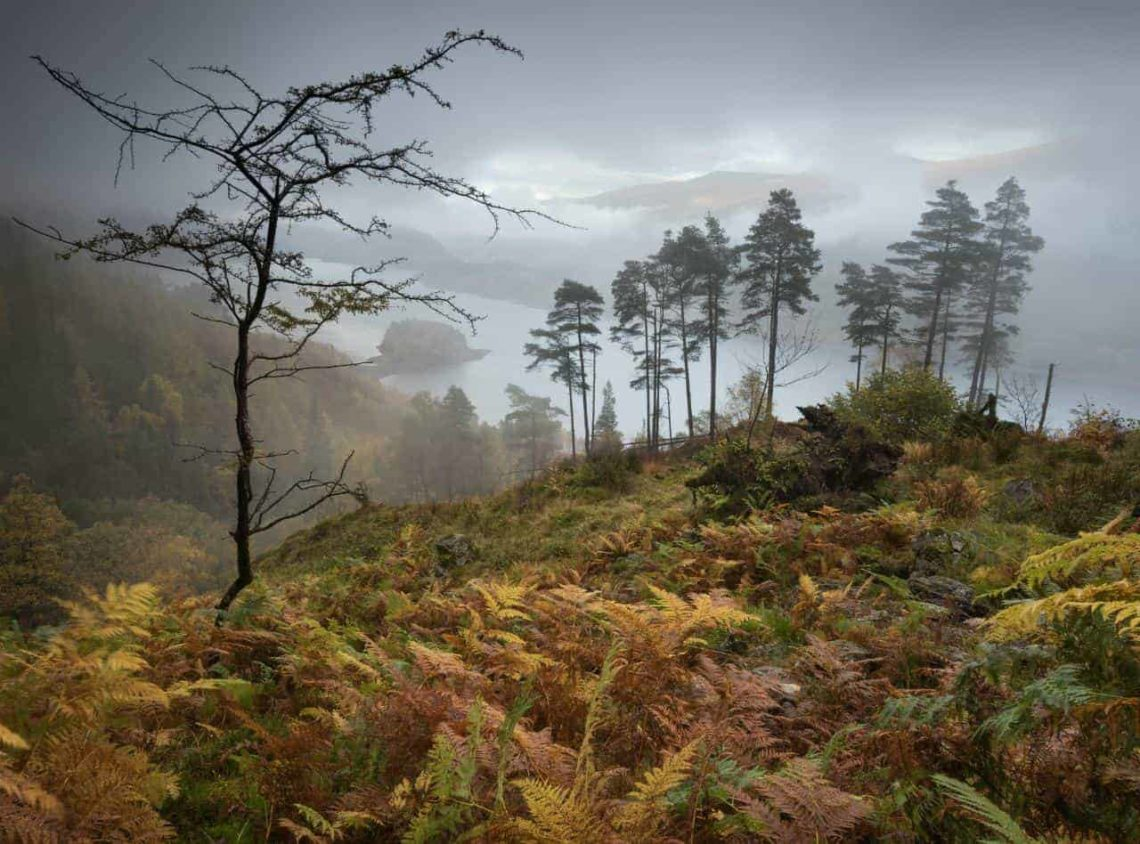 Autumnsong Thirlmere-min