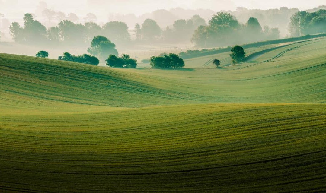Photographing the South Downs