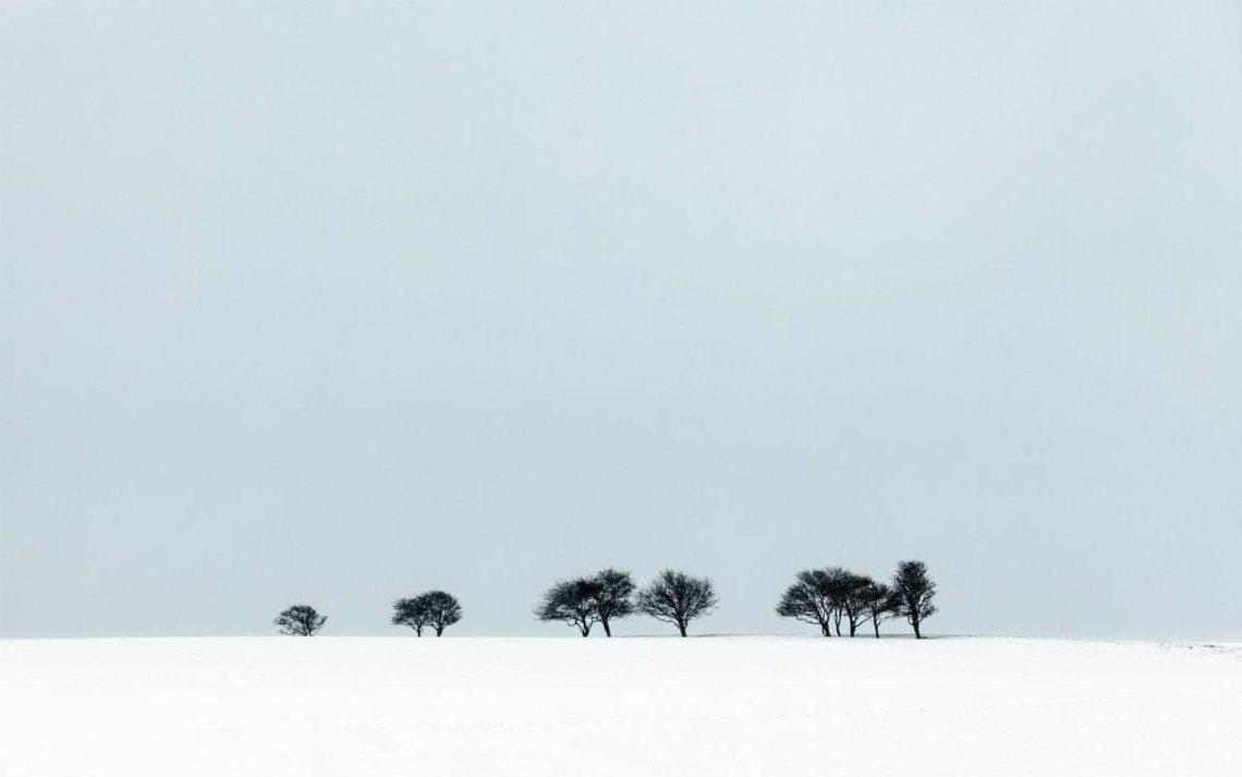 Treeline-Saddlescobe-FinnHopson-min