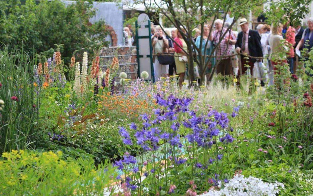 Birchall Tea at RHS Chelsea Flower Show
