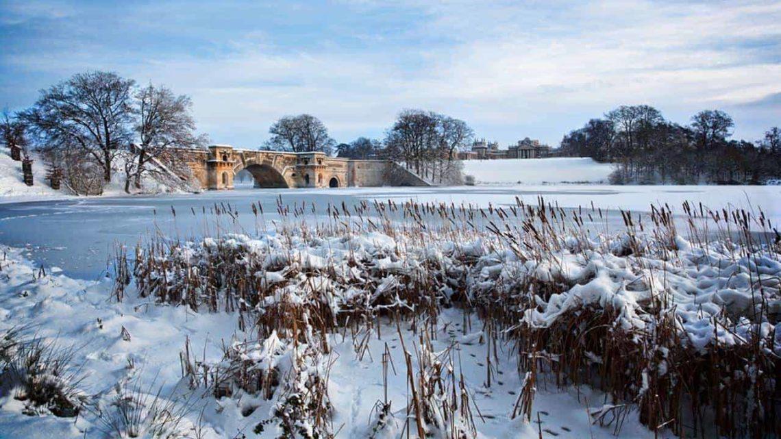 Blenheim Park Under Snow-min