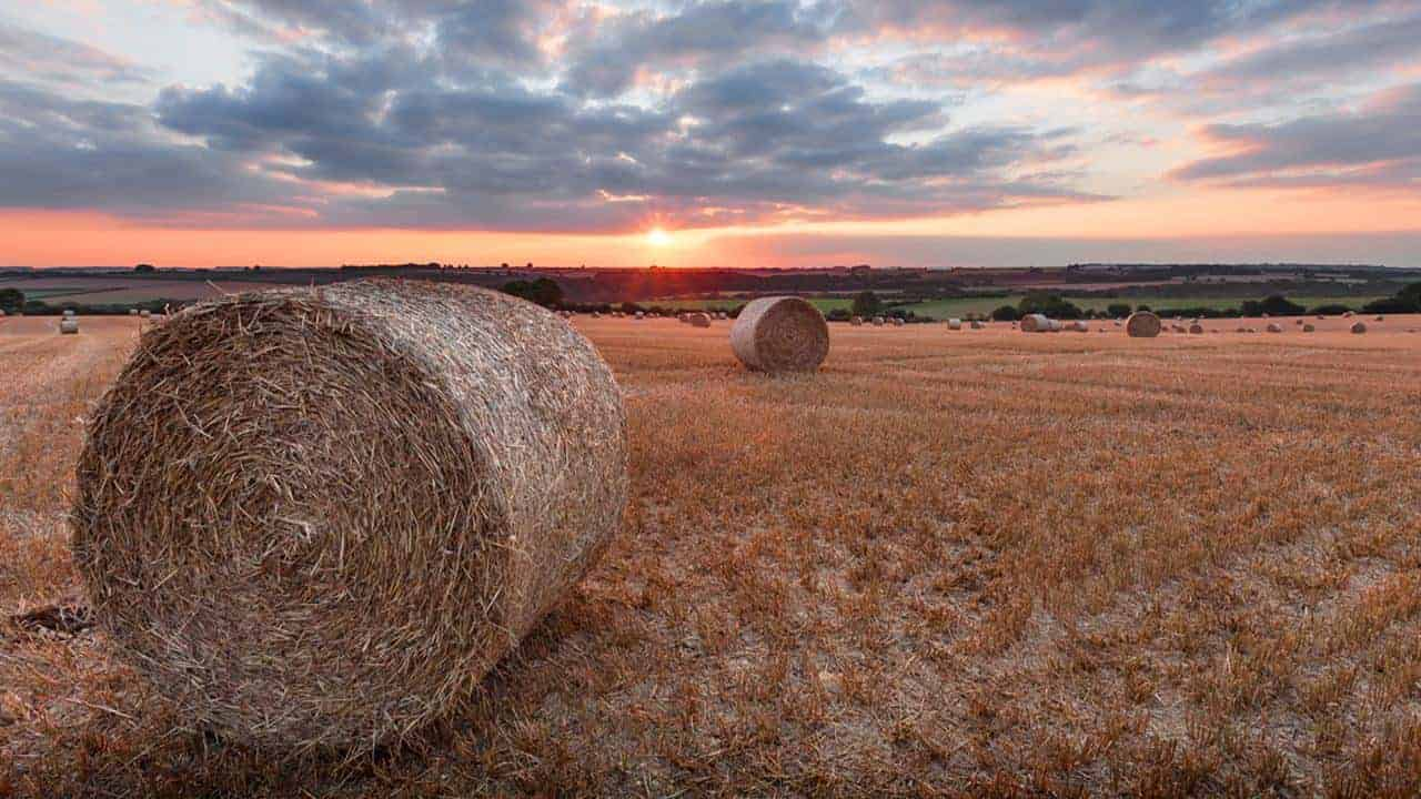 Photographing the Cotswolds – Martyn Ferry