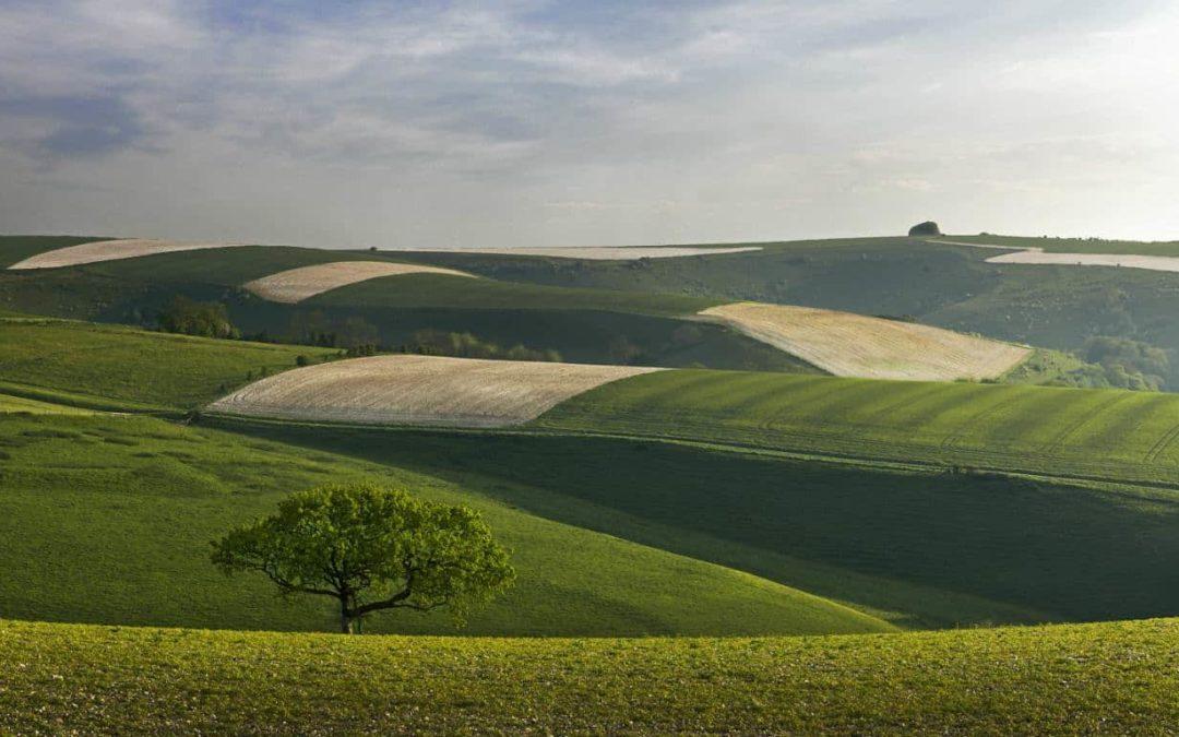 Landscape Photographer Charlie Waite